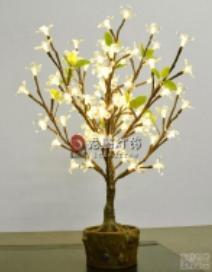 LED Bonsai Type PZDC80